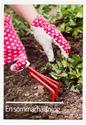 Bild på Vykort- Sommarhälsning plantering